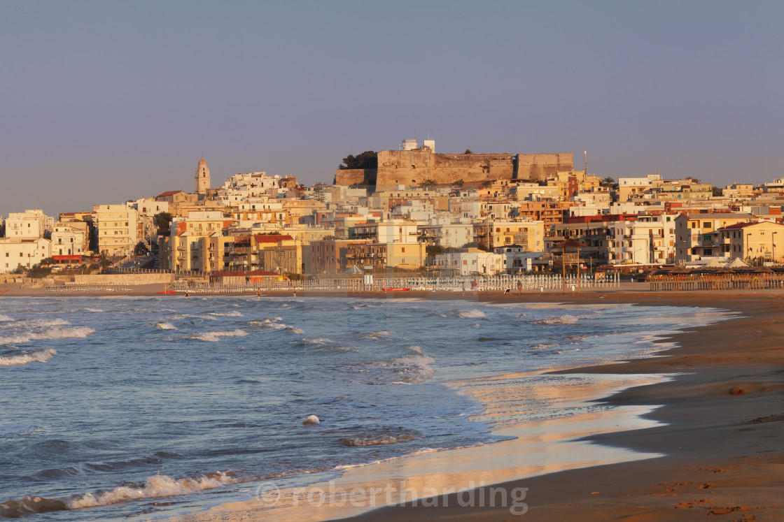 """""""Old town with cathedral at sunset, Vieste, Gargano, Foggia Province, Puglia,..."""" stock image"""