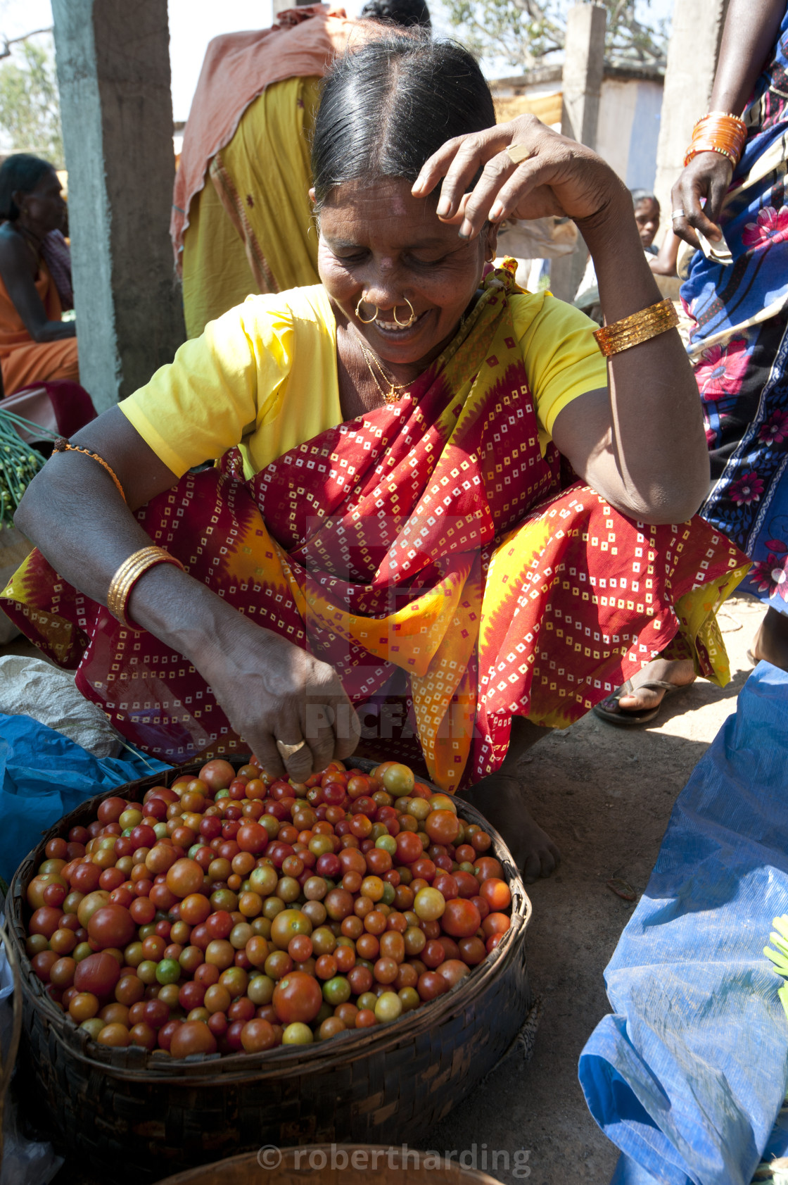 """Mali tribeswoman with gold noserings selling tomatoes in Mali weekly tribal..."" stock image"