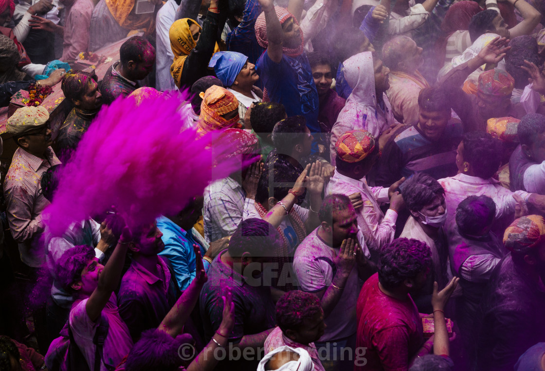 """Lathmar Holi celebrations in Bankei Bihari Temple, Vrindavan, Braj, Uttar..."" stock image"