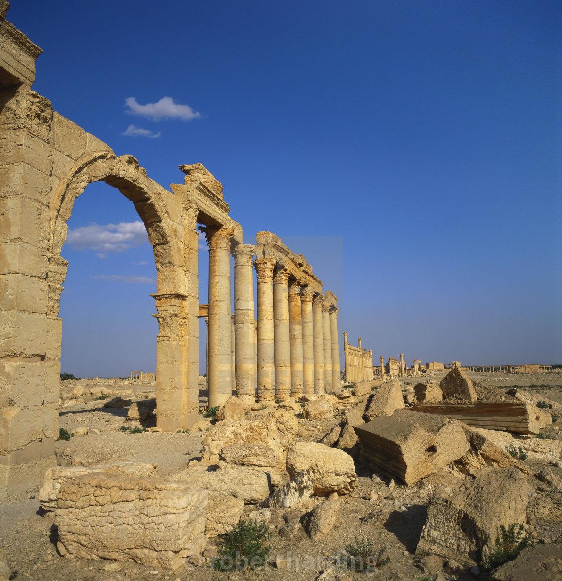 """Classical Columns, Palmyra, Syria"" stock image"