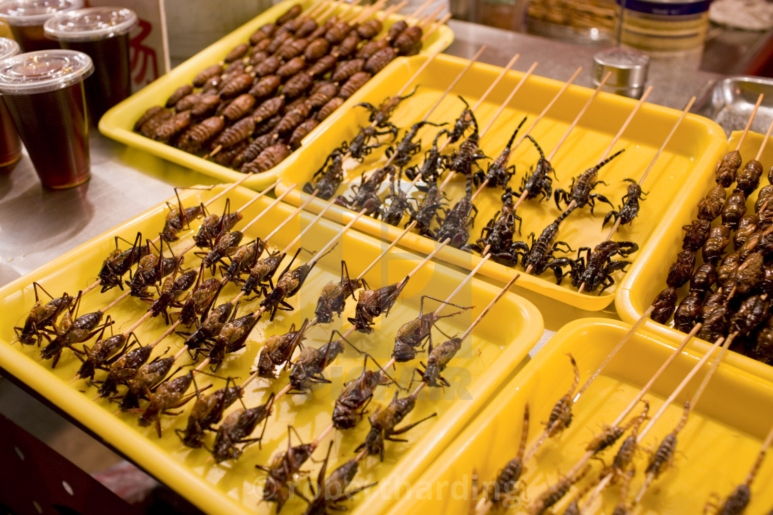 """Deep fried grasshoppers, silkworms and scorpions for sale in the Night..."" stock image"