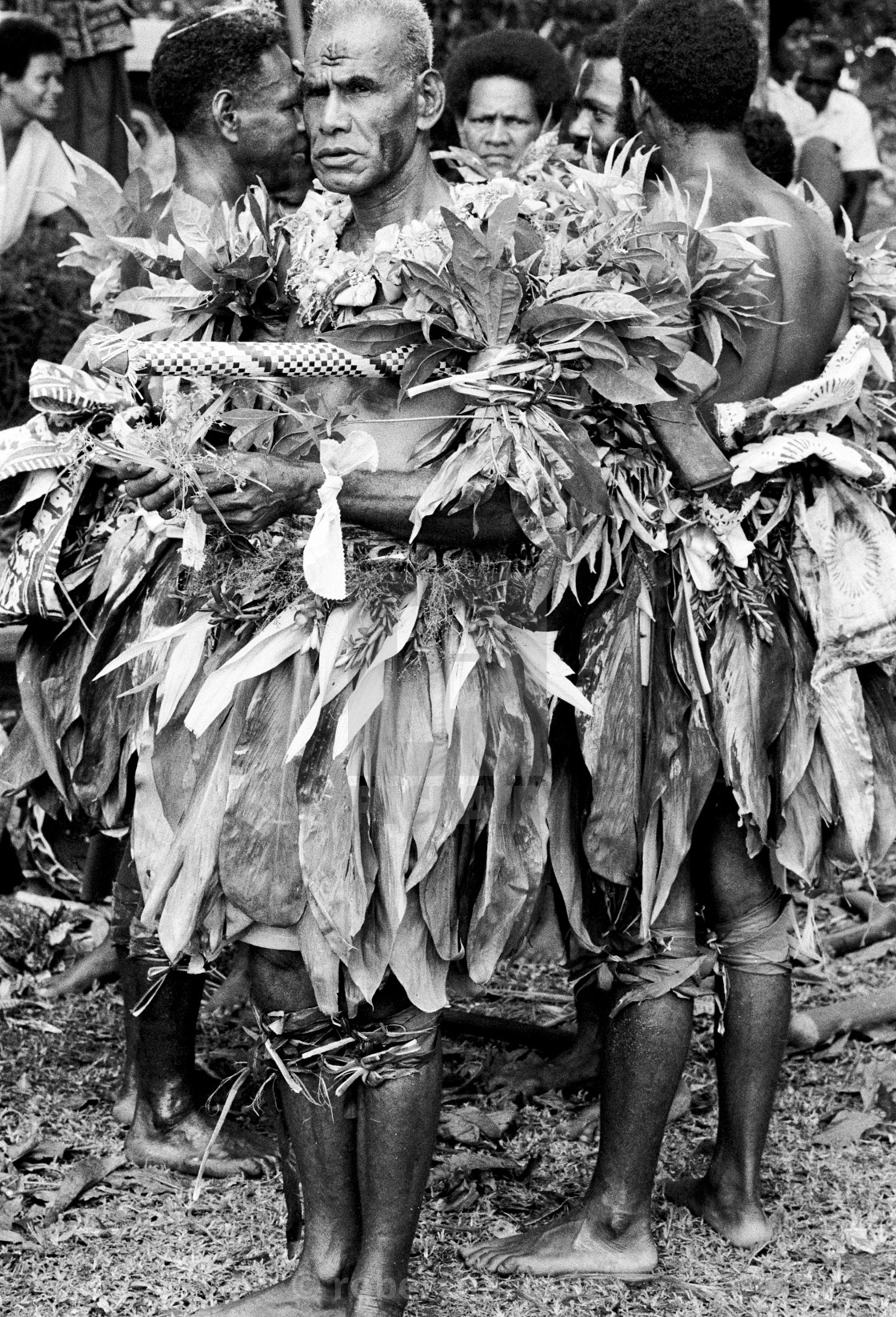 Native Men At Tribal Gathering In Fiji South Pacific