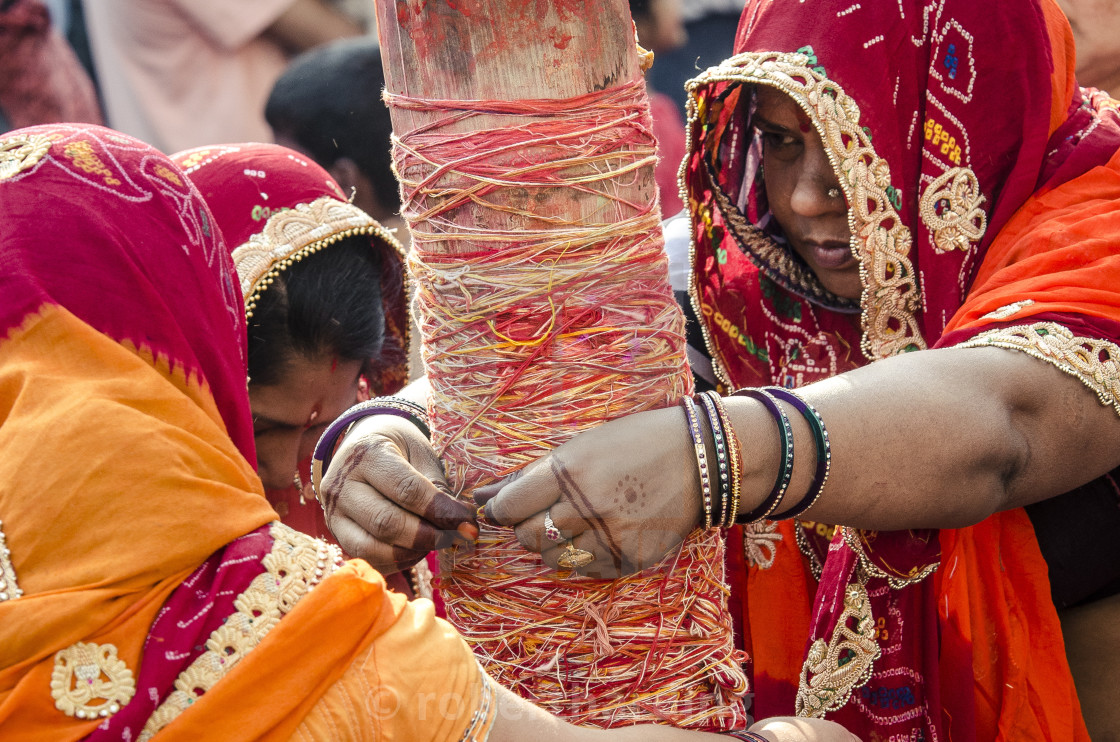 """Women apply string to the Holi chir, a traditional morning ceremony, during..."" stock image"