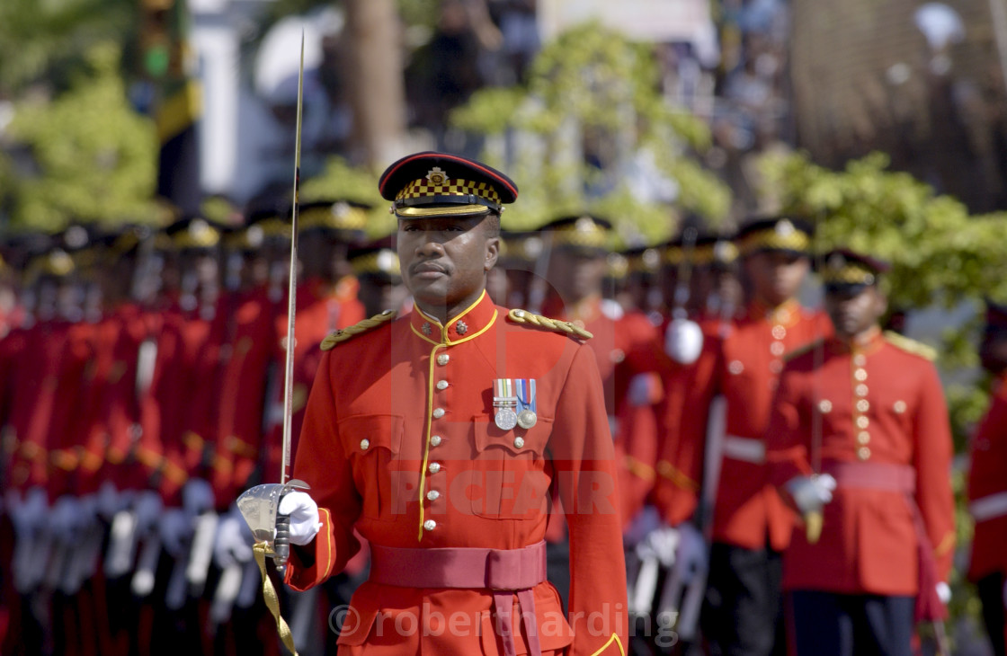 """""""Military Guard Of Honour of Jamaica Defence Force outside Parliament in..."""" stock image"""