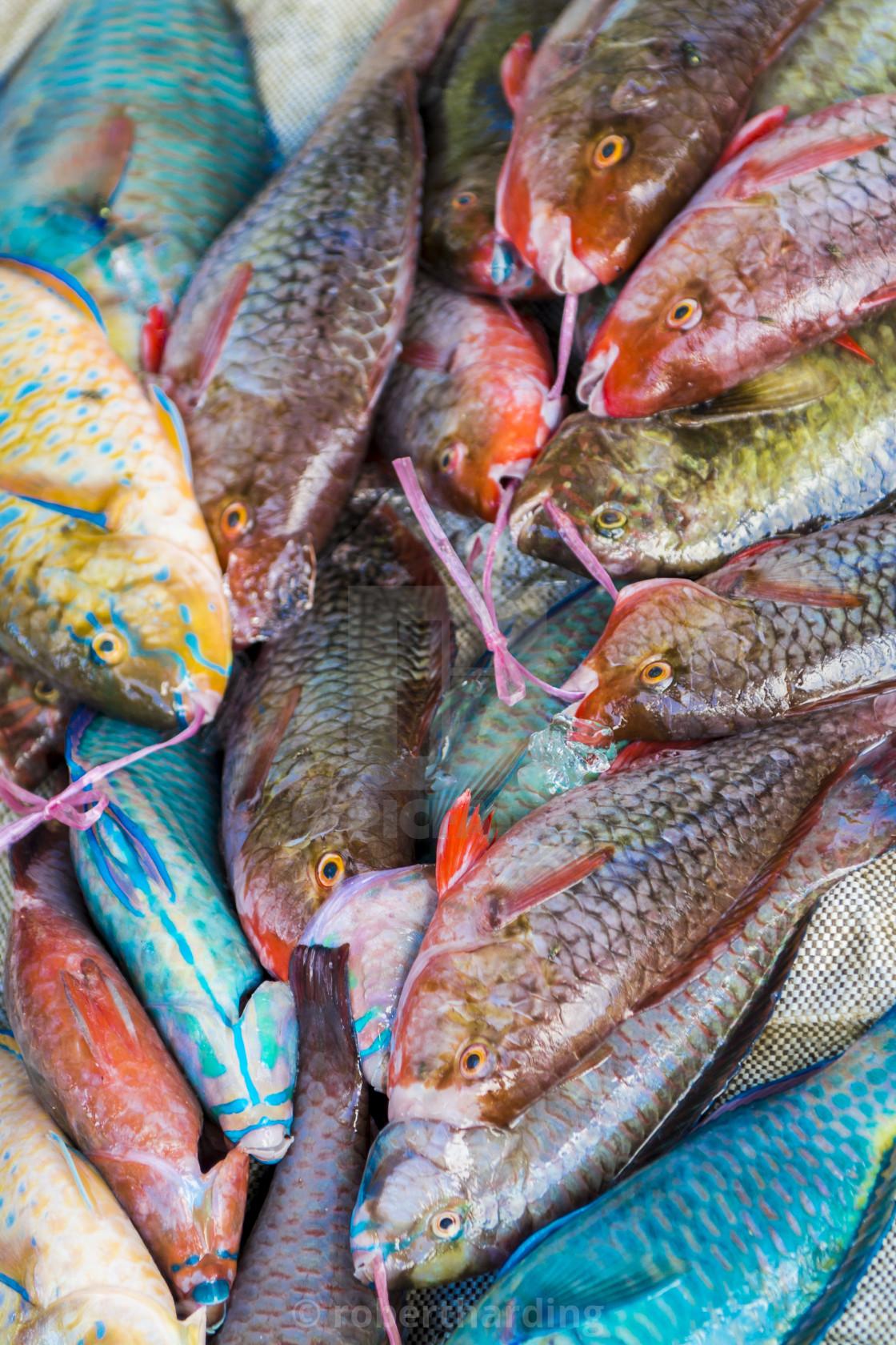 """Local fish market, Praslin, Republic of Seychelles, Indian Ocean."" stock image"