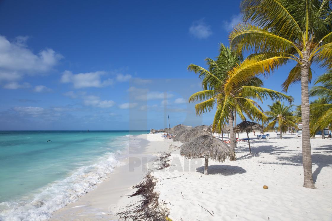 Cuba Isla De La Juventud Cayo Largo De Sur Playa Sirena License