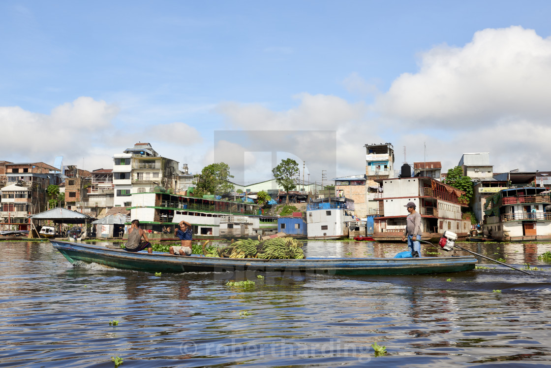 """Salesmen transporting a load of bananas on riverboat in Nanay River, with..."" stock image"