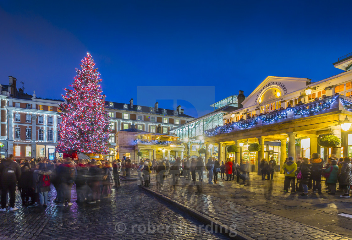 England Christmas Tree.View Of Christmas Tree In Covent Garden At Dusk London