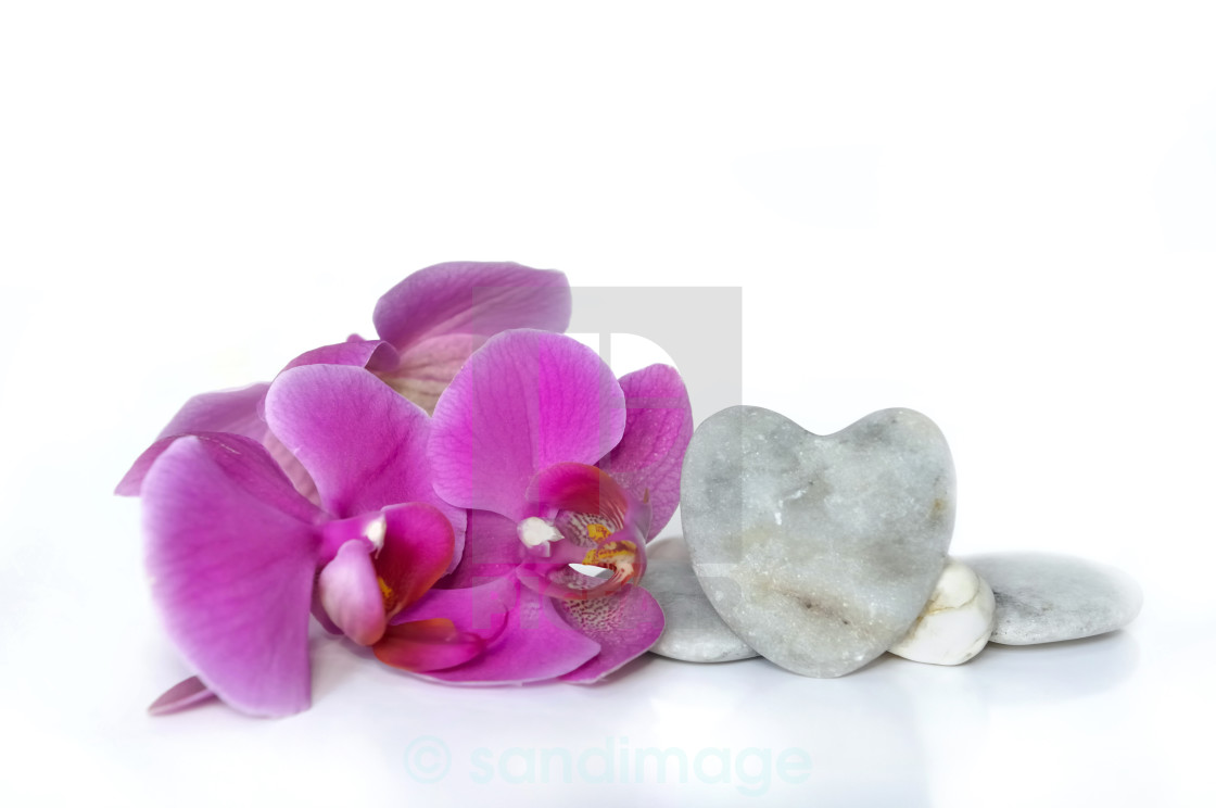 """love with orchid"" stock image"
