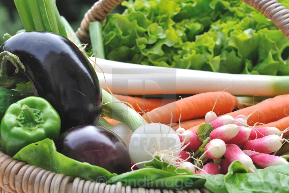 """""""fresh vegetables"""" stock image"""