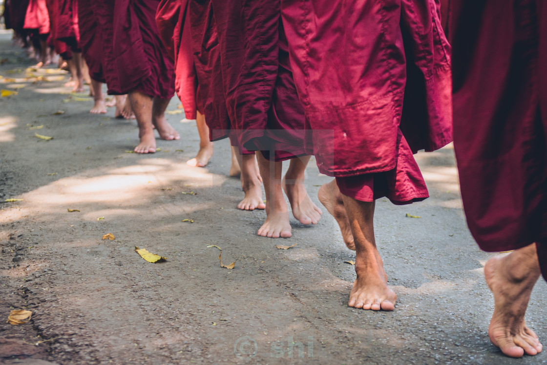 """young monks"" stock image"