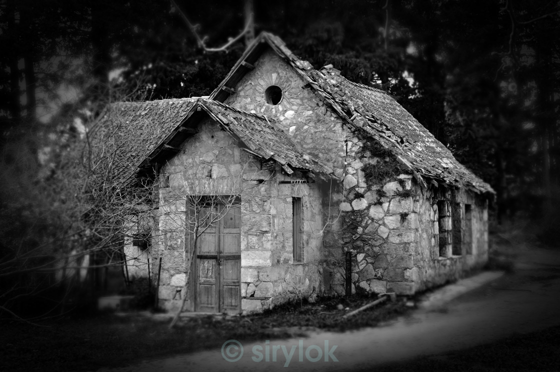 """""""derelict house in the woods"""" stock image"""