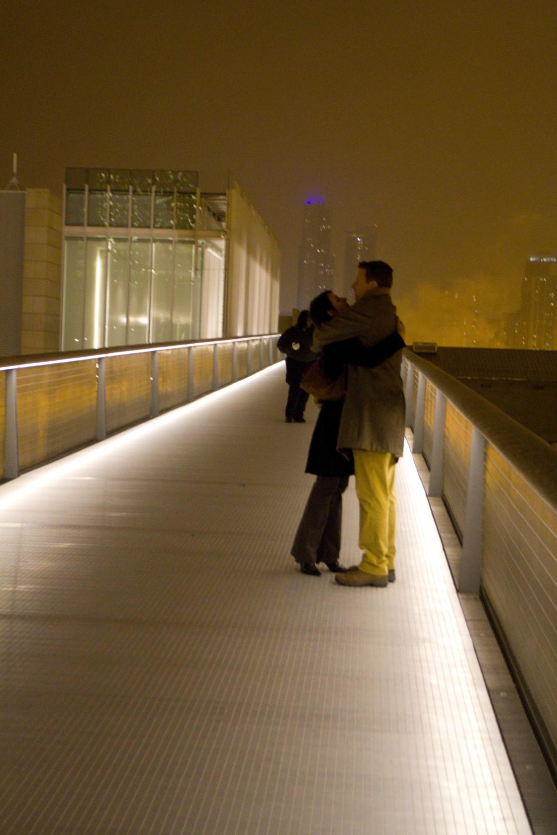 """""""Sky Bridge, Art Institute, Chicago"""" stock image"""