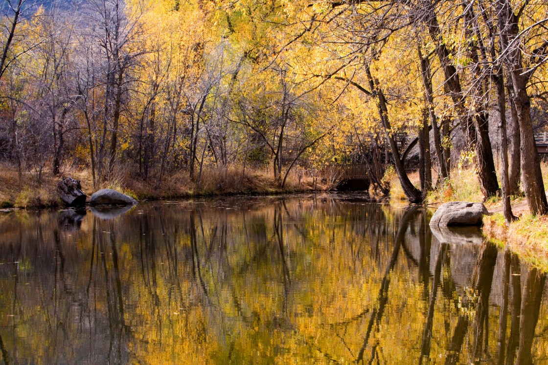 """""""Fall reflection in Boulder Creek,"""" stock image"""