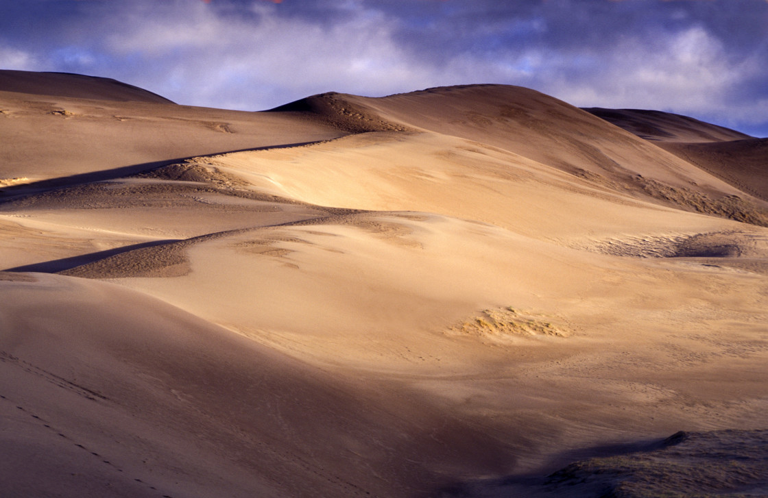"""""""Great Sand Dunes National Park, CO"""" stock image"""