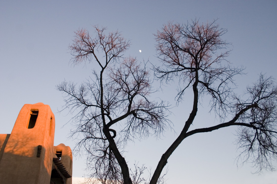 """Tree and Adobe building, New Mexico, USA"" stock image"