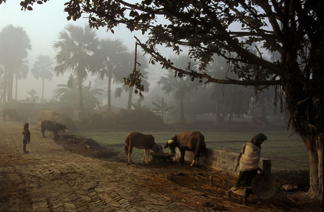 """Village of Vaishali, India-68452"" stock image"
