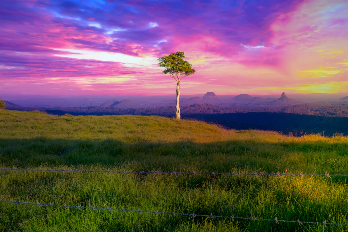 """One Tree Hill, Maleny, Queensland Australia."" stock image"