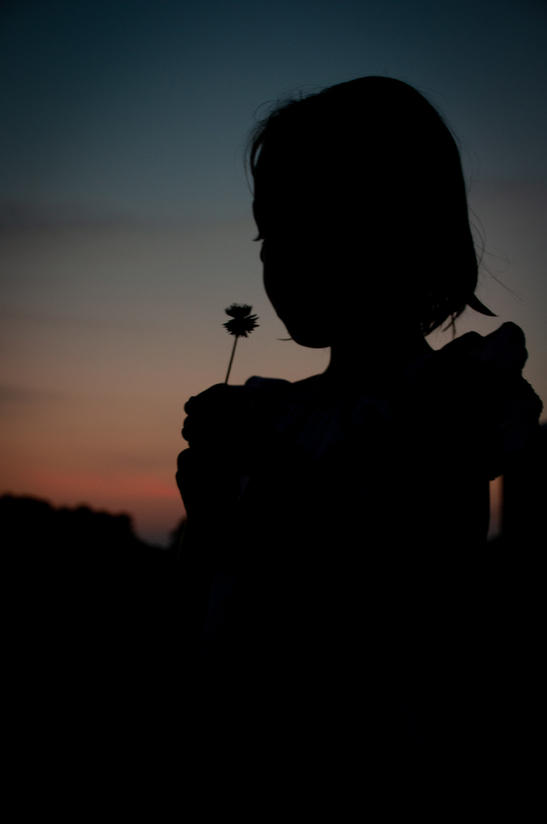 """""""Silhouette of Girl Blowing Dandelion"""" stock image"""