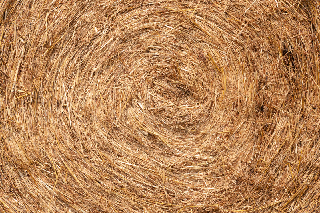 """""""Textured Background of Hay Bale on a Farm"""" stock image"""