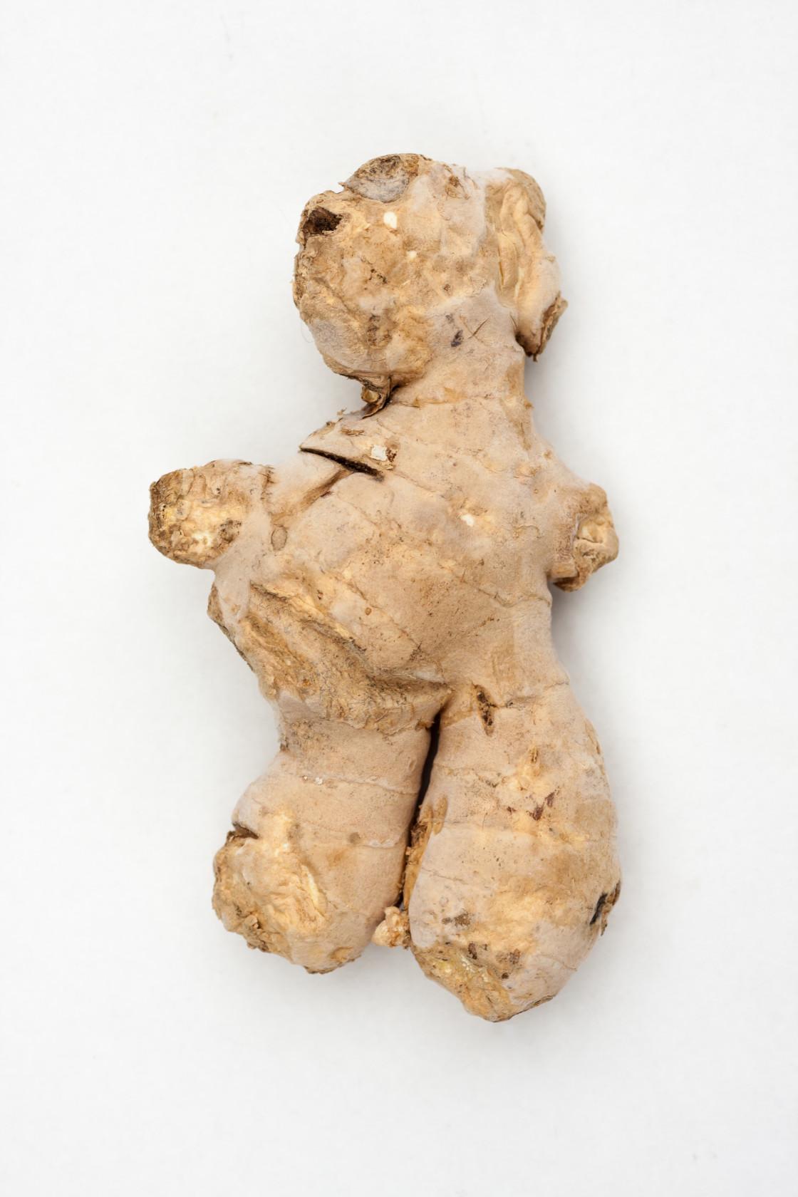 """Bear-Shaped Ginger Root"" stock image"