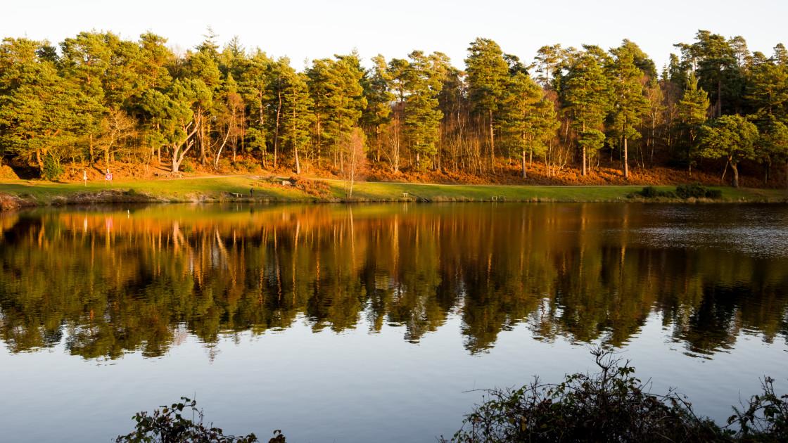 """""""Bourley Bottom Reservoir"""" stock image"""