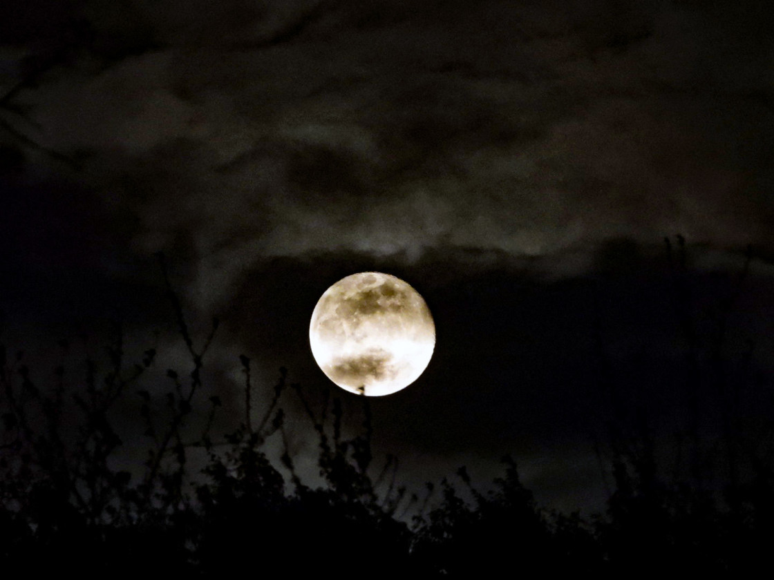 """""""Pink Super Moon"""" stock image"""