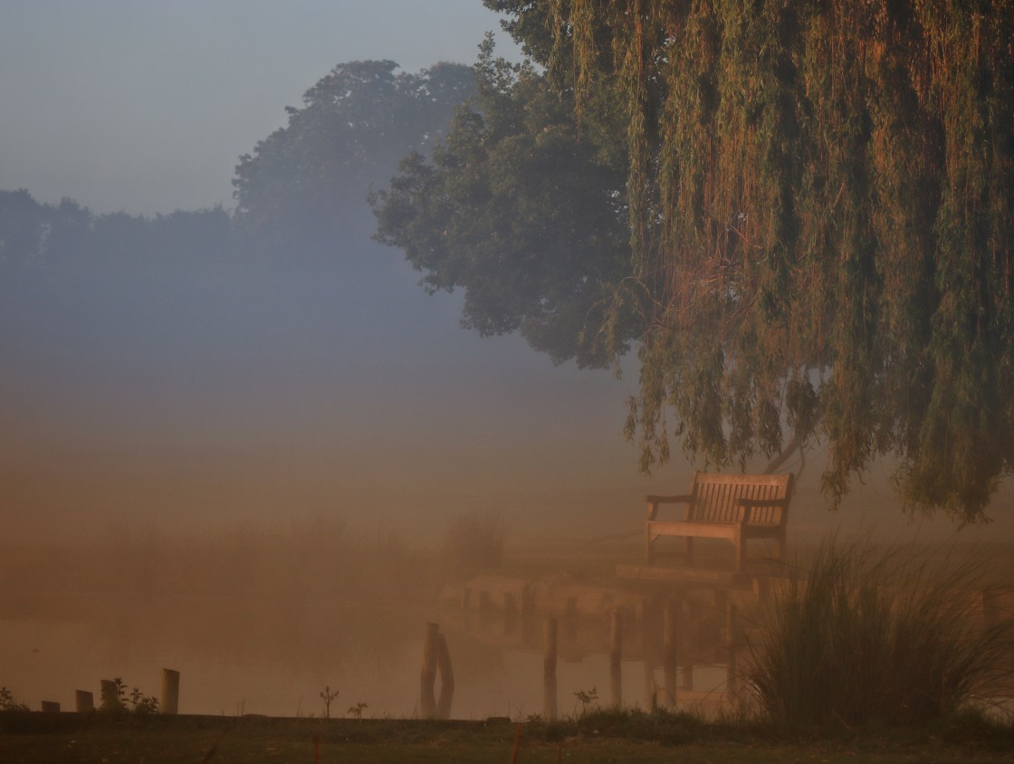 """""""Bench in the misty morn"""" stock image"""