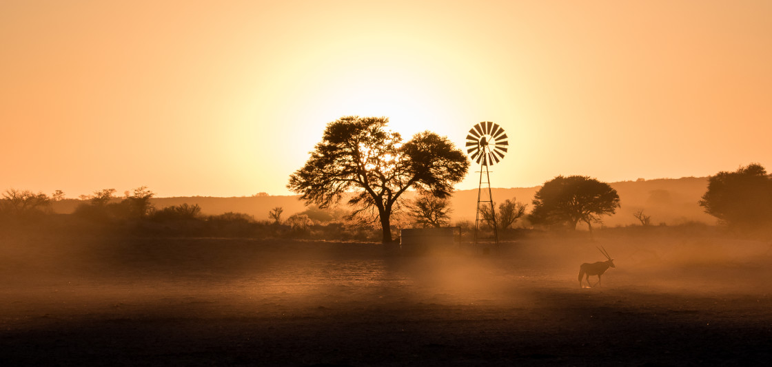 """Kalahari Sunrise"" stock image"