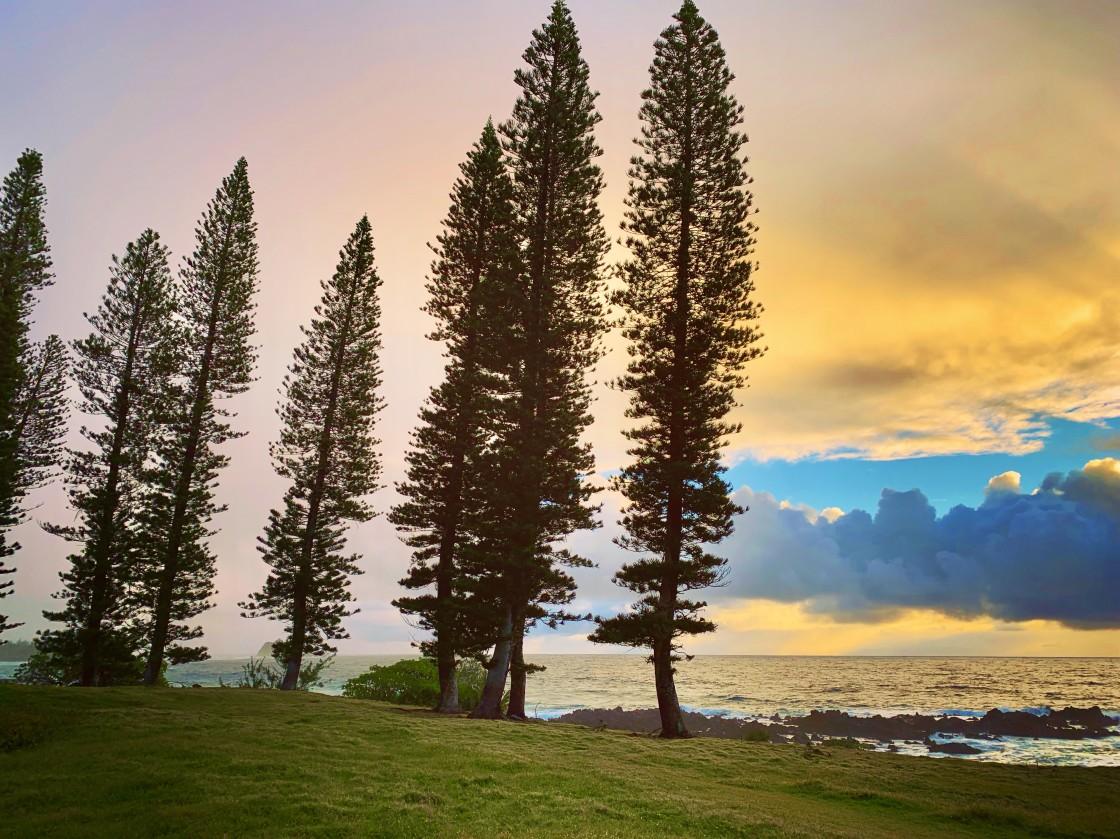 """Maui Sunrise"" stock image"