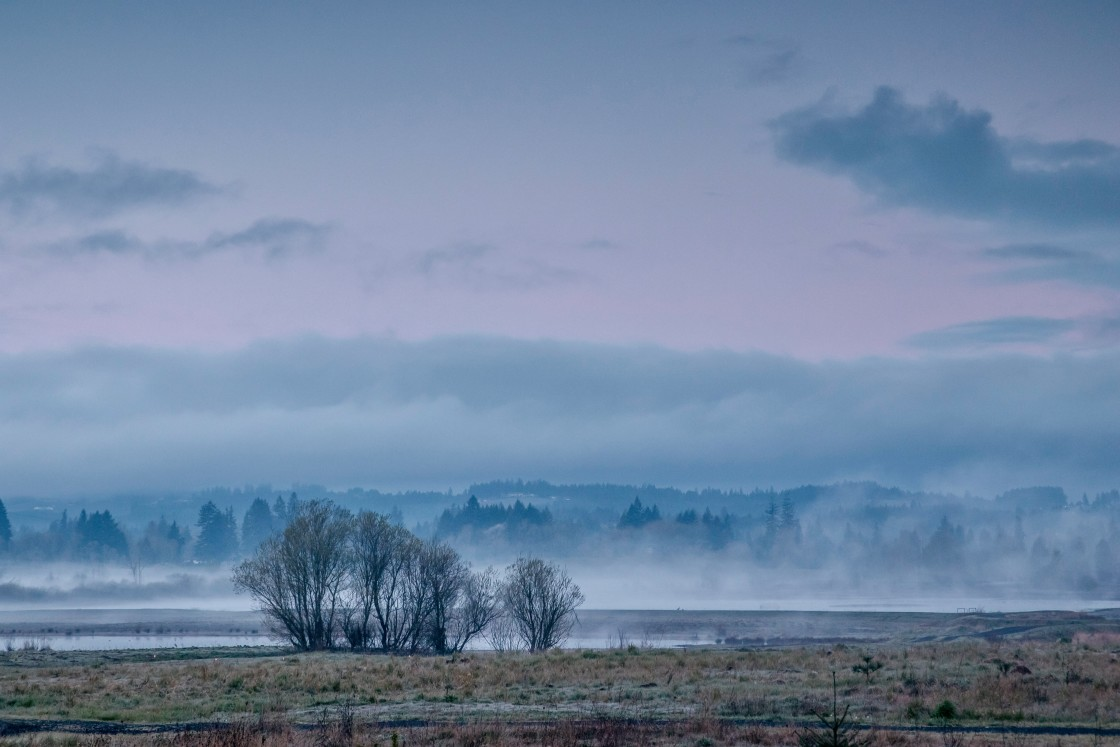 """Tualatin River National Wildlife Refuge"" stock image"