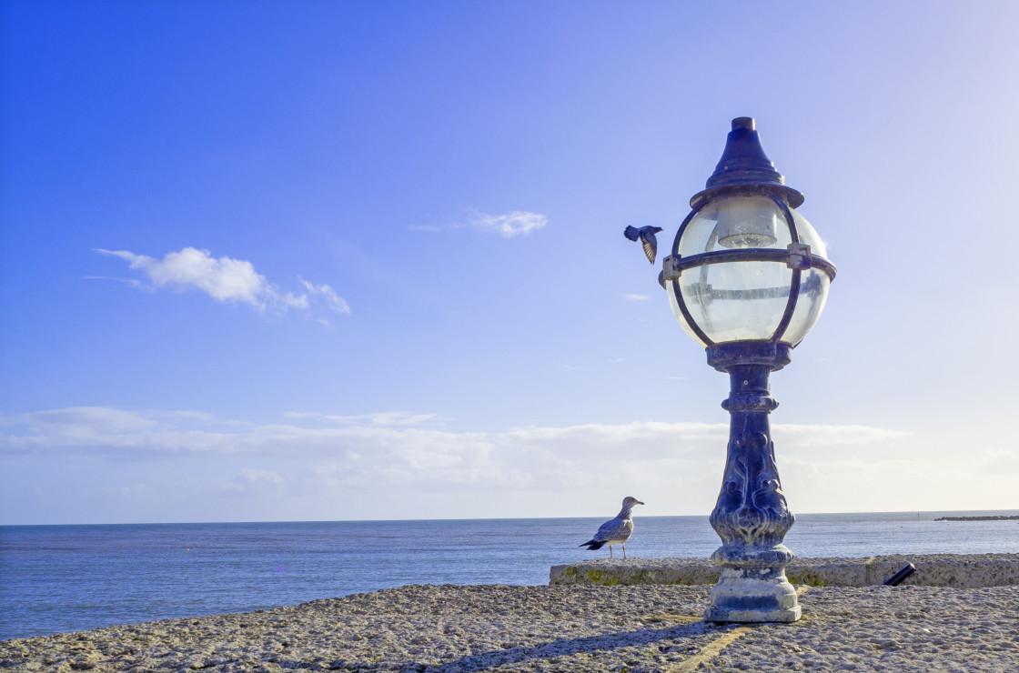 """Lyme Regis Bay"" stock image"