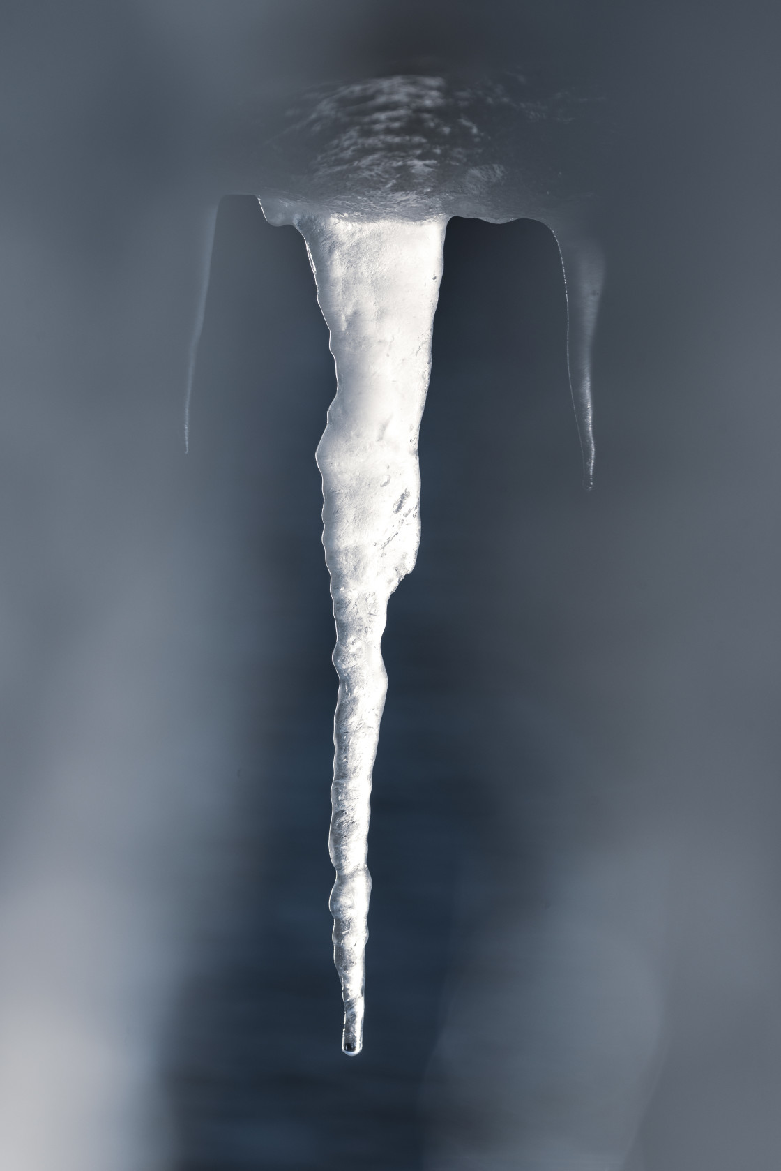 """Detail of Icicles"" stock image"