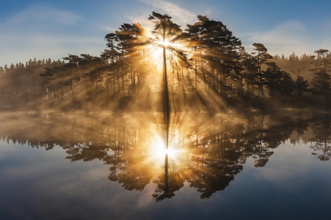 """""""Stunning sunrise"""" stock image"""