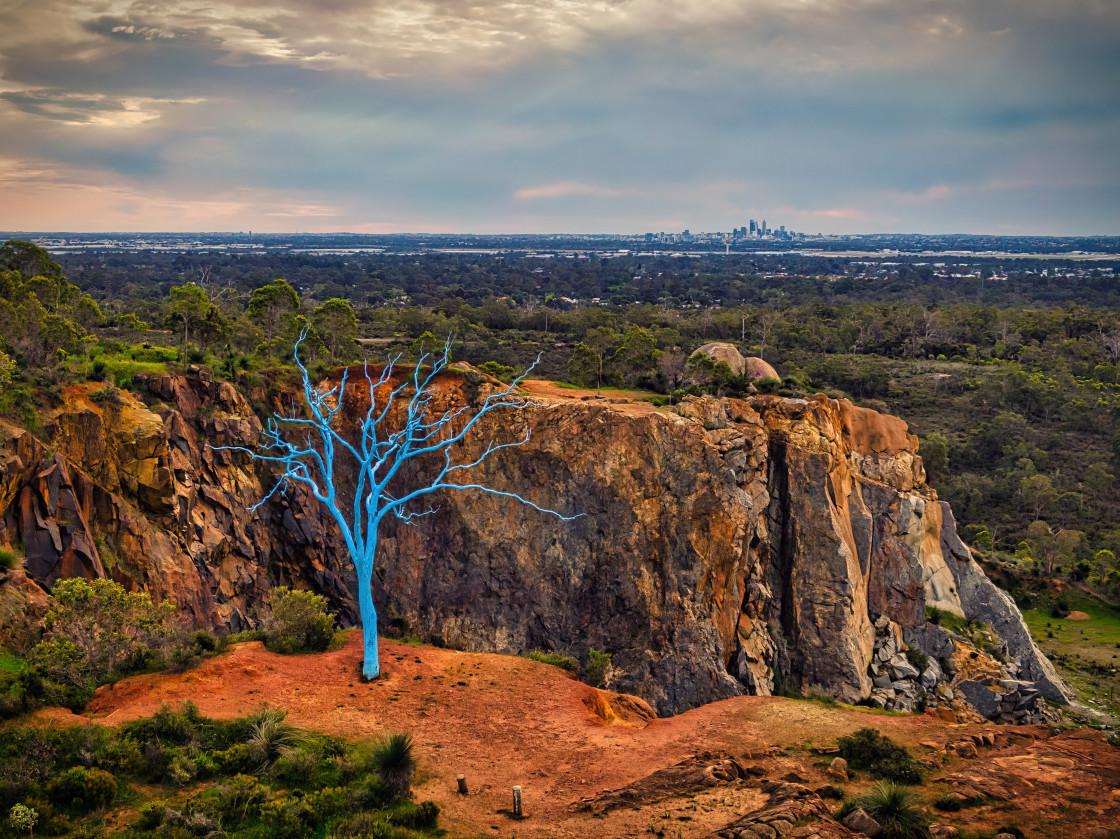 """Blue Tree, Stathams Quarry"" stock image"