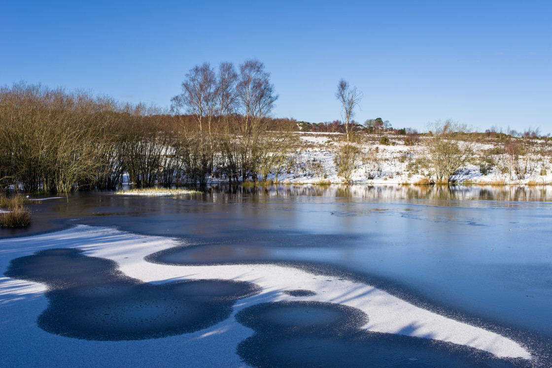 """Frozen Pond"" stock image"