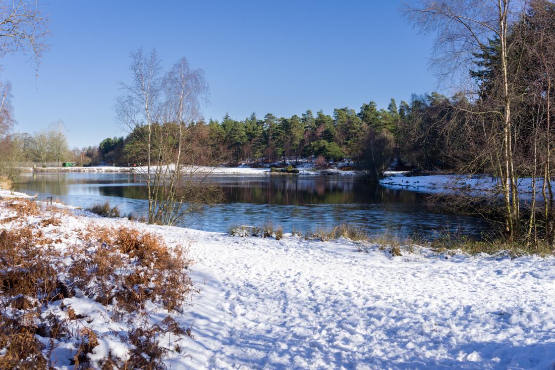 """""""Wintery Bourley Lake"""" stock image"""