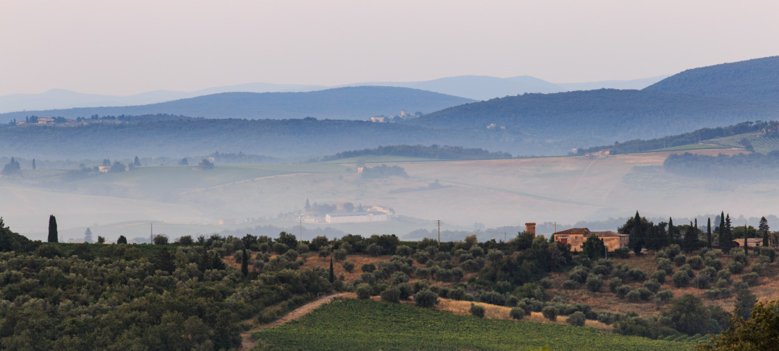 """""""Tuscan Morning"""" stock image"""