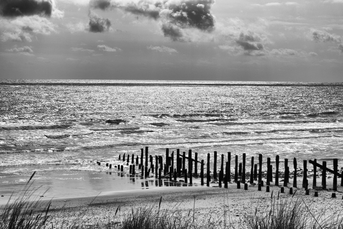 """""""Remains at Spurn Point"""" stock image"""