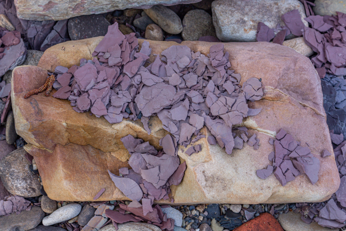 """Fragments of slate on rocks."" stock image"