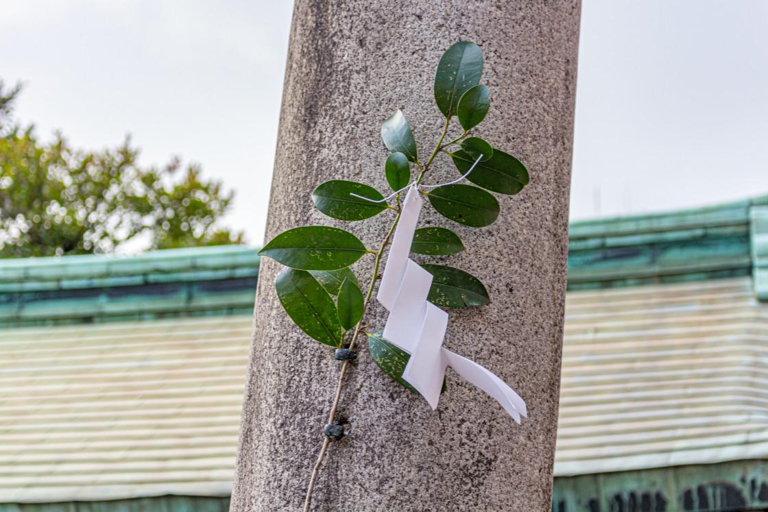 """Shide streamers and saski leaves at shrine, Nagoya, Japan."" stock image"