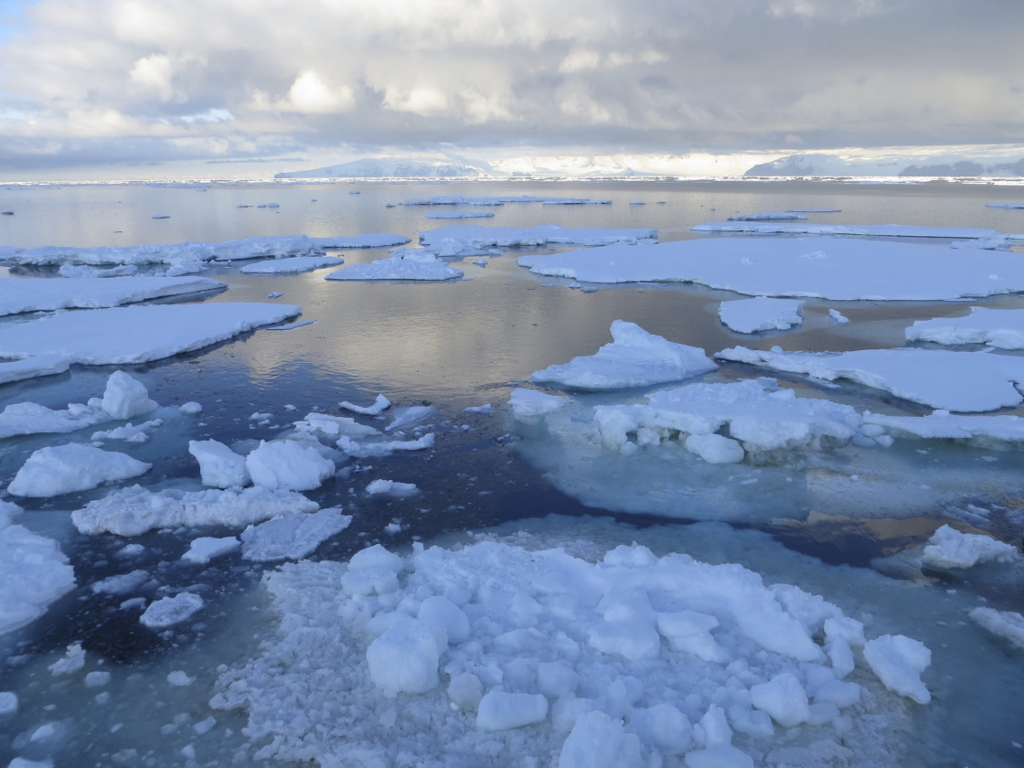 """""""Blue Ice in the Ross Sea"""" stock image"""