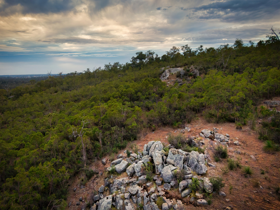 """""""Rocky Hillside and Forest"""" stock image"""