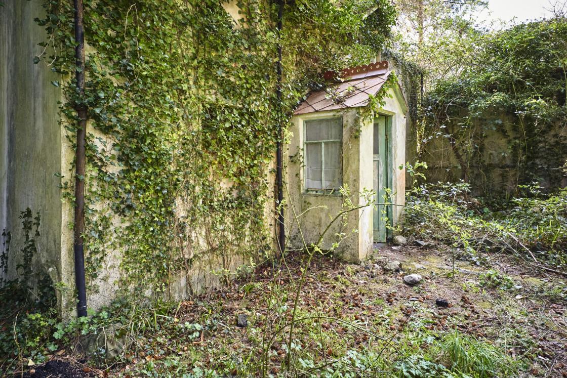 """""""Manx cottage front door"""" stock image"""