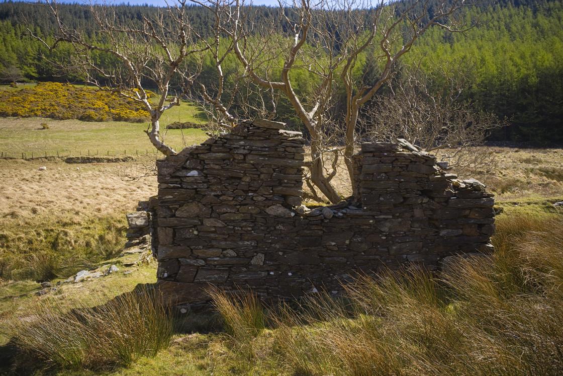 """""""Abandoned tholtan farm background"""" stock image"""
