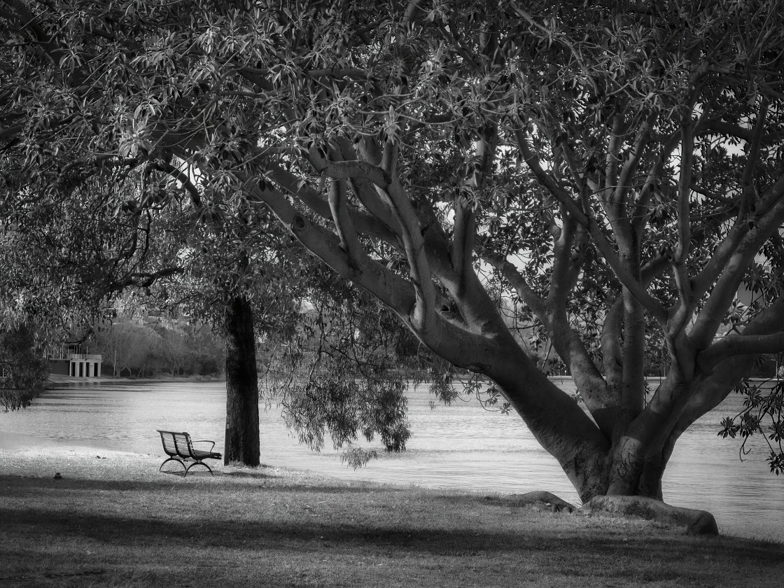 """""""Lonely Park Bench by the River"""" stock image"""