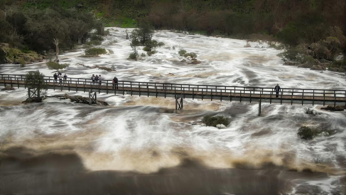"""""""Bells Rapids Bridge"""" stock image"""