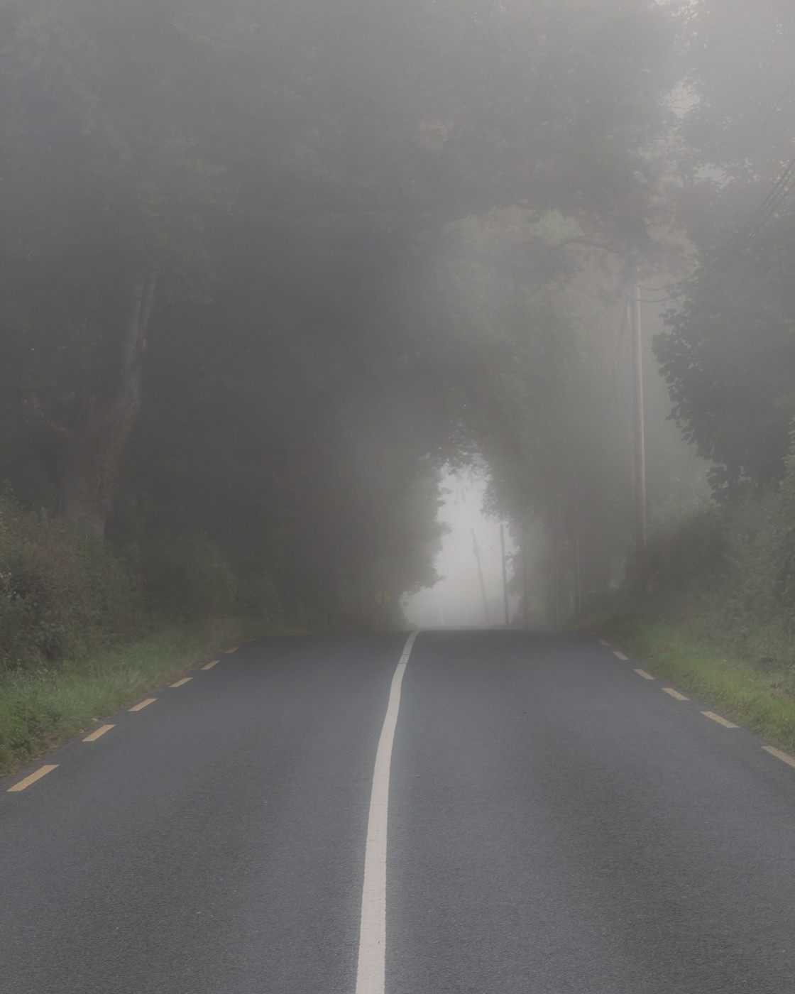 """Foggy morning road"" stock image"