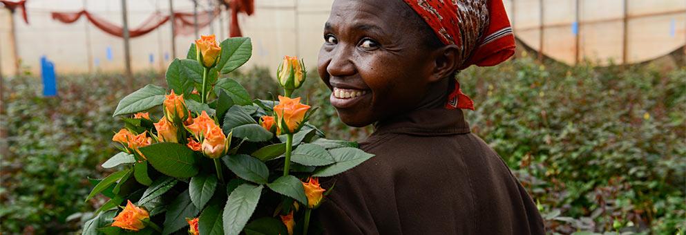 Fair Trade Blumenarbeiterin