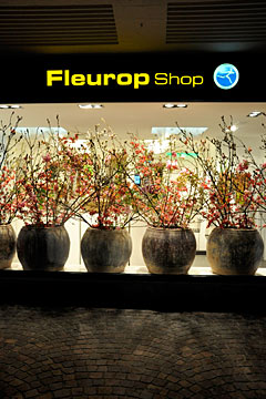Fleurop Shop Schaufenster